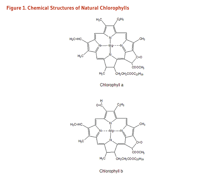 Figure 1. Chemical structures of natural chlorophylls: chlorophyll a and chlorophyll b.