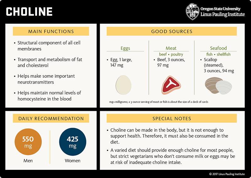 Choline Flashcard. Main functions: 1) structural component of all cell membranes, 2) transport and metabolism of fat and cholesterol, 3) helps make some important neurotransmitters, and 4) helps maintain normal levels of homocysteine in the blood. Good sources: egg (1 large), 147 mg; meat (beef and poultry), beef (3 ounces), 97 mg; seafood (fish and shellfish), scallop (steamed, 3 ounces) 94 mg (mg=milligrams; a three-ounce serving of meat or fish is about the size of a deck of cards; Daily Recommendation: 550 mg for all men and 425 mg for all women; Special Notes: 1) Choline can be made in the body, but it is not enough to support health. Therefore, it must also be consumed in the diet. 2) A varied diet should provide enough choline for most people, but strict vegetarians who don't consume milk or eggs may be at risk of inadequate choline intake.