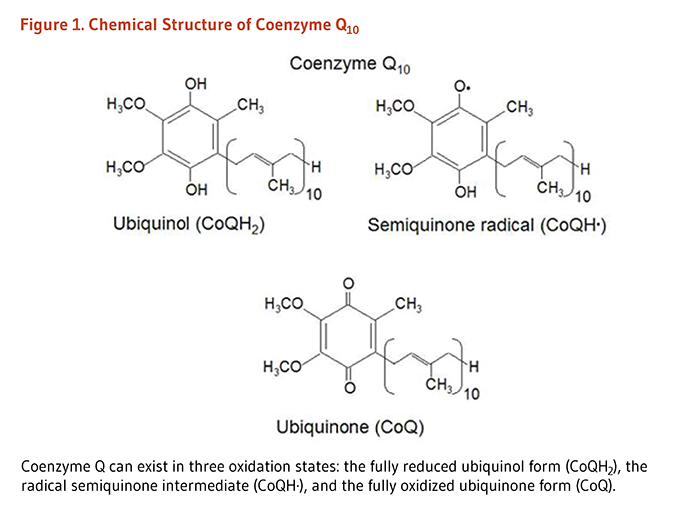 Figure 1. Chemical Structure of Coenzyme Q10. Coenzyme Q can exist in three oxidation states: the fully reduced ubiquinol form (CoQH2), the radical semiquinone intermediate (CoQH·), and the fully oxidized ubiquinone form (CoQ). Chemical structures of these forms are shown.