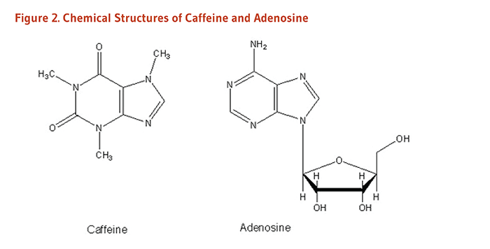 Figure 2. Chemical Structures of Caffeine and Adenosine.