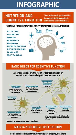 cognition infographic thumbnail