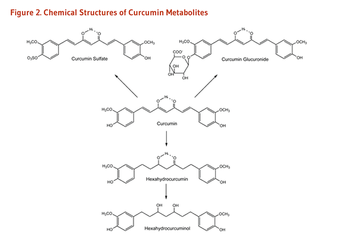 Figure 2. Chemical structures of curcumin metabolites: curcumin sulfate, curcumin glucuronide, hexahydrocurcumin, and hexadydrocurcuminol.
