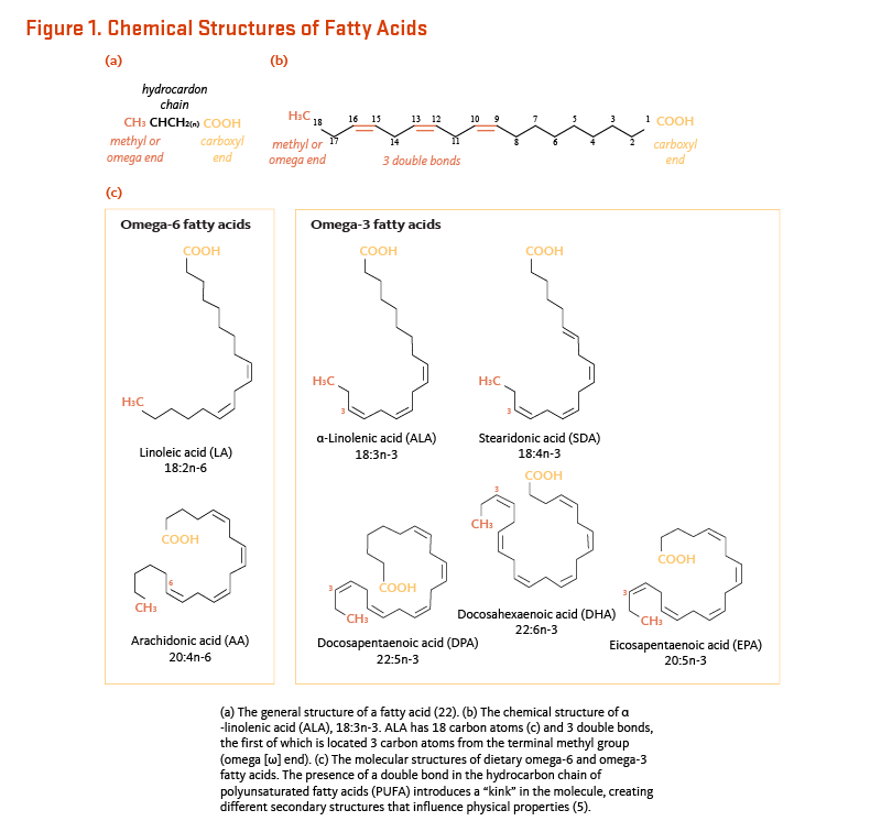 Figure 1. Chemical Structures of Fatty Acids. (a) The general structure of a fatty acids. (b) The chemical structure of alpha-linolenic acid (ALA), 18:3n-3. ALA has 18 carbon atoms and three double bonds, the first of which is located three carbon atoms from the terminal methyl group (omega end). (c) The molecular structures of dietary omega-6 and omega-3 fatty acids. The presence of a double bond in the hydrocarbon chain of polyunsaturated fatty acids introduces a kink in the molecule, creating different secondary structures that influence physical properties.
