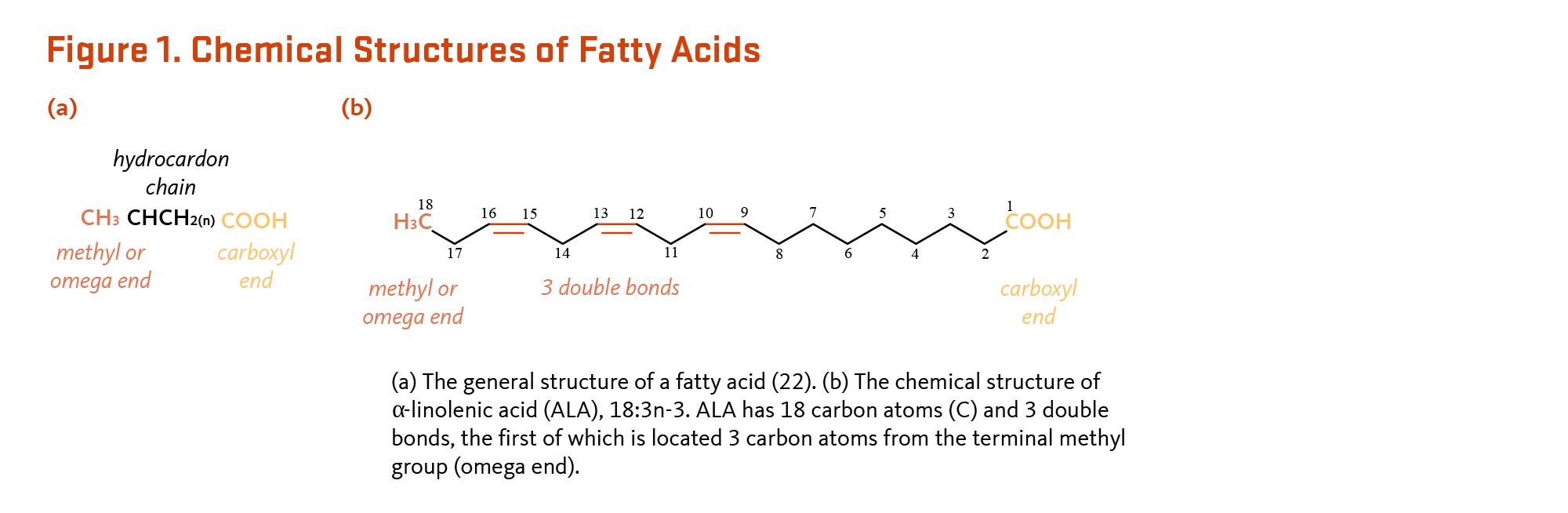 Essential Fatty Acids | Linus Pauling Institute | Oregon