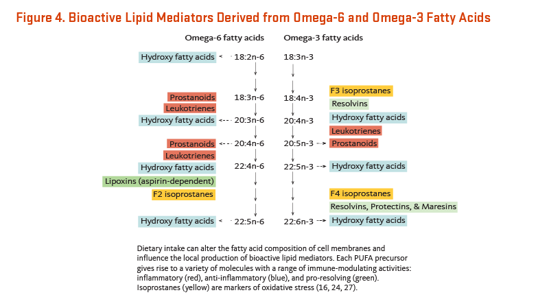 Figure 4. Bioactive Lipid Mediators Derived from Omega-6 and Omega-3 Fatty Acids. Dietary intake can alter the fatty acid composition of cell membranes and influence the local production of bioactive lipid mediators. Each PUFA precursor gives rise to a variety of molecules with a range of immune-modulating activities: inflammatory, anti-inlammatory, and pro-resolving. Isoprostanes are markers of oxidative stress.