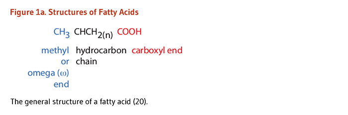EFA Figure 1a. The general structure of a fatty acid: CH3 is the methyl or omega end; CHCH2(n) is the hydrocarbon chain; and COOH is the carboxyl end.