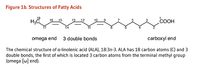 Figure 1b. The chemical structure of alpha-linolenic acid (ALA), 18:3n-3. ALA has 18 carbon atoms and 3 double bonds, the first of which is located 3 carbon atoms from the terminal methyl group (i.e., omega end).