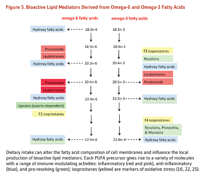 Figure 5. Bioactive Lipid Mediators Derived from Omega-6 and Omega-3 Fatty Acids. Dietary intake can alter the fatty acid composition of cell membranes and influence the local production of bioactive lipid mediators. Each PUFA precursor gives rise to a variety of molecules with a range of immune modulating activities: inflammatory (prostanoids, leukotrienes), anti-inflammatory (hydroxyl fatty acids), and pro-resolving (lipoxins [aspirin-dependent], resolvins, hydroxyl fatty acids, protectins, and maresins); isoprostanes (F2, F3, and F4 isoprostanes) are markers of oxidative stress.