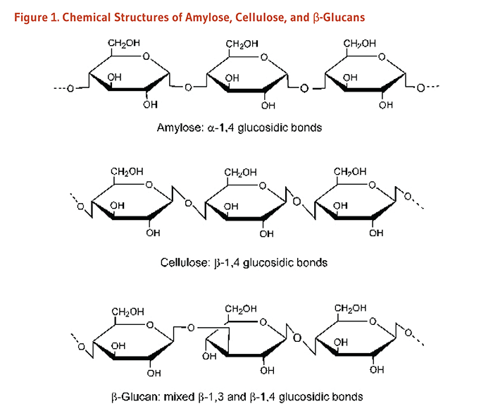図1. Chemical Structures of Amylose (alpha-1,4 glucosidic bonds), Cellulose (beta-1,4 glucosidic bonds), and Beta-Glucans (mixed beta-1,3 and beta-1,4 glucosidic bonds).