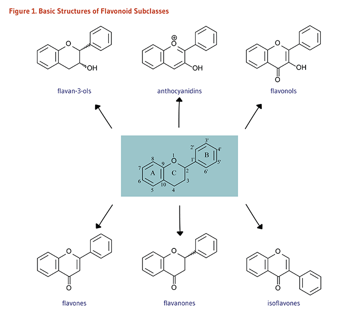 Figure 1. Basic Structures of Flavonoid Subclasses