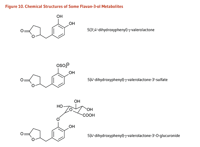 Figure 10. Chemical Structures of Some Flavan-3-ol Metabolites