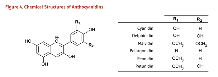 Figure 4. Chemical Structures of Anthocyanidins