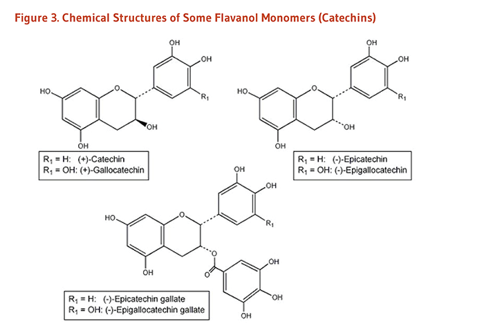 Figure 3. Chemical Structures of Some Flavanol Monomers (Catechins): catechin, gallocatechin, epicatechin, epigallocatechin, epicatechin gallate, and epigallocatechin gallate.