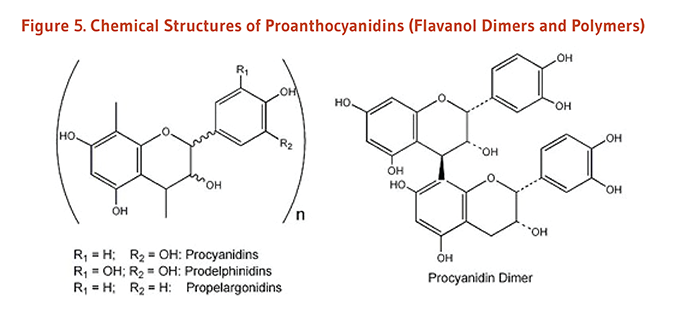 Figure 5. Chemical Structures of Proanthocyanidins (Flavanol Dimers and Polymers): procyanidins, prodelphinidins, propelargonidins, and procyanidin dimer.