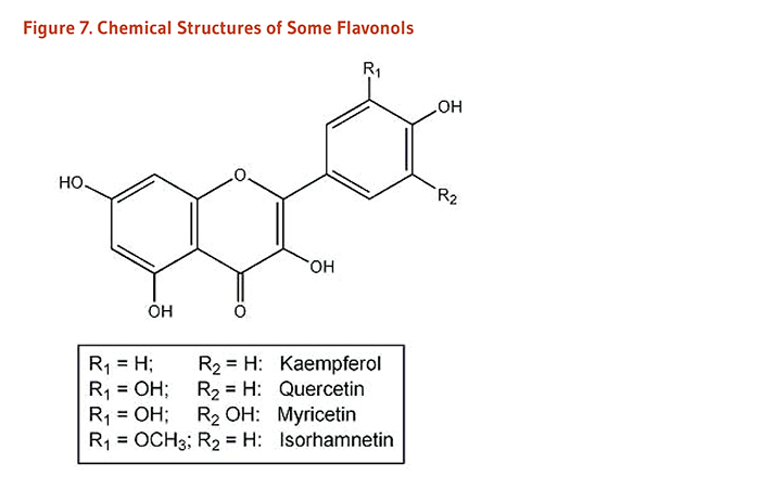 Figure 7. Chemical Structures of Some Flavanols: kaempferol, quercetin, myricetin, and isorhamnetin.