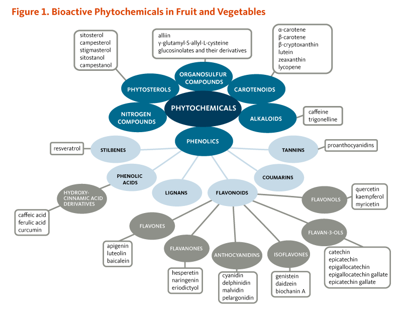 Figure 1. Bioactive Phytochemicals in Fruit and Vegetables. Organosulfur compounds (alliin, gamma-glutamyl-S-allyl-L-cysteine, glucosinolates and their derivatives); phytosterols (sitosterol, campesterol, stigmasterol, sitostanol, campestanol); nitrogen compounds; carotenoids (alpha-carotene, beta-carotene, beta-cryptoxanthin, lutein, zeaxanthin, lycopene); alkaloids (caffeine, trigonelline); tannins (proanthocyanidins); coumarins; lignans, stilbenes (resveratrol); phenolic acids (hydroxycinnamic acid derivatives: caffeic acid, ferulic acid, and curcumin); and flavonoids (flavones including apigenin, luteolin, and baicalein; flavanones including hesperetin, naringenin, and eriodictyol; anthocyanidins including cyanidin, delphinidin, malvidin, and pelargonidin; isoflavones including genistein, daidzein, and biochanin A; flavan-3-ols including catechin, epicatechin, epigallocatechin, epigallocatechin gallate, and epicatechin gallate; and flavonols including quercetin, kaempferol, and myricetin).