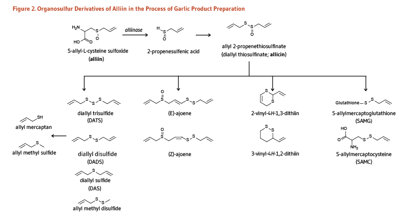 Figure 2. Organosulfur Derivatives of Alliin in teh Process of Garlic Product Preparation