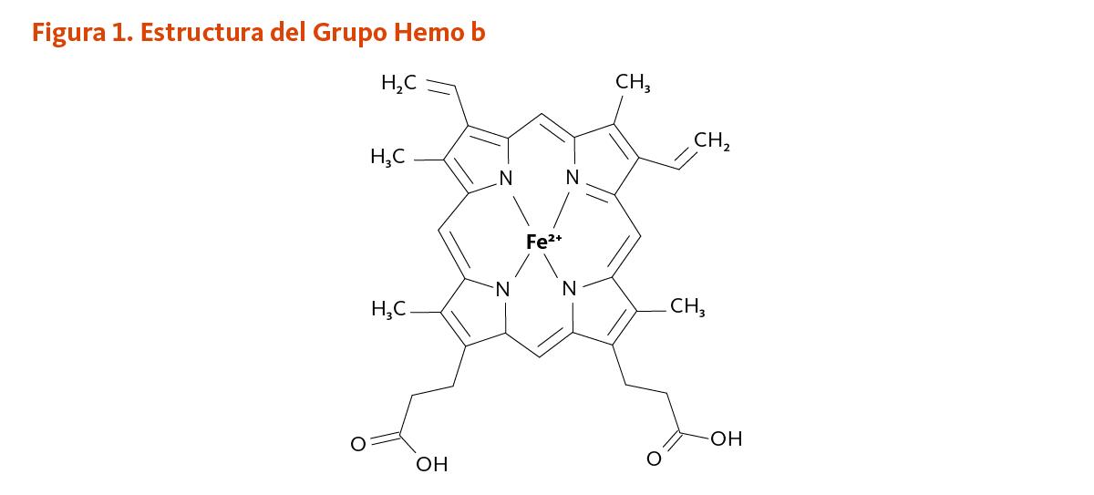 Hemoglobina normal hierro bajo