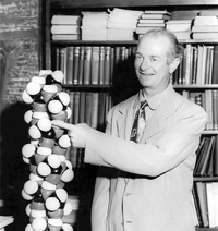 Alpha Helix in 1958