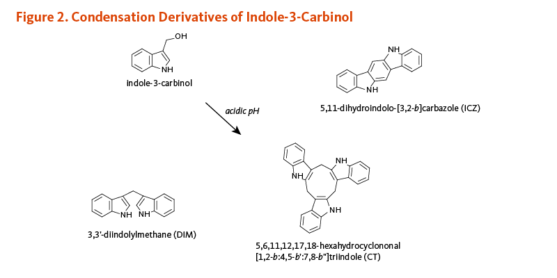 "Figure 2. Condensation Derivatives of Indole-3-Carbinol: 3,3'-diindolylmethane (DIM), 5,6,11,12,17,18-hexahydrocyclononal [1,2-b:4,5-b':7,8-b""]triindole (CT), and 5,11-dihydroindolo-[3,2-b]carbazole (ICZ)"