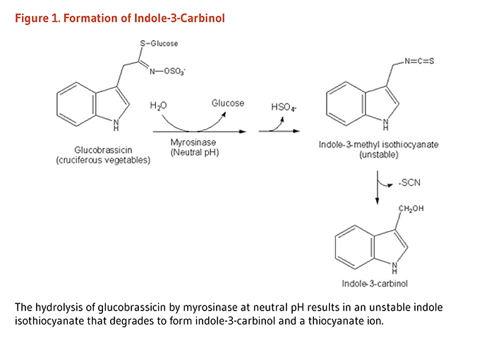 Figure 1. Formation of Indole-3-Carbinol. The hydrolysis of glucobrassicin by myrosinase at neutral pH results in an unstable indole isothiocyanate (indole-3-methyl isothiocyanate) that degrades to form indole-3-carbinol and a thiocyanate ion.