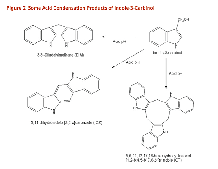 "Figure 2. Chemical structures of some acid condensation products of indole-3-carbinol: 3,3'-Diindolylmethane (DIM) , 5,11-dihydroindolo-[3,2-b]carbazole (ICZ), and 5.6.11.12.17.18-hexahydrocyclononal [1,2-b:4,5-b':7,8-b""]triindole (CT)."