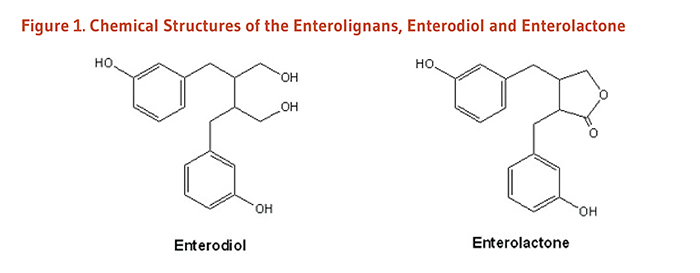 Figure 1. Chemical Structures of the Enterolignans, Enterodiol and Enterolactone.