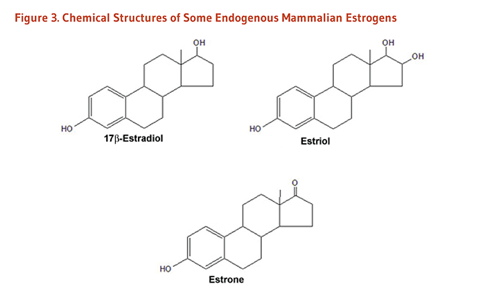 Figure 3. Chemical Structures of Some Endogenous Mammalian Estrogens: 17 beta-estradiol, estriol, and estrone.