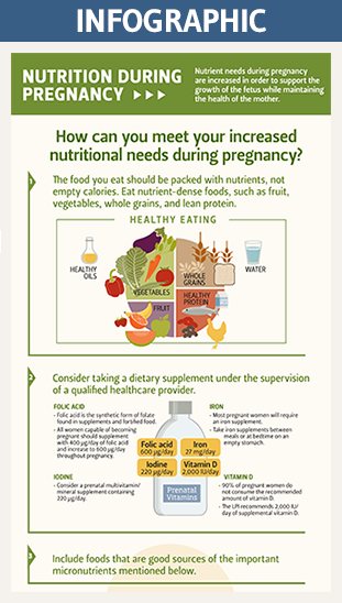 pregnancy infographic thumbnail