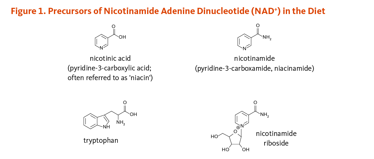 Figure 1. Precursors of Nicotinamide Adenine Dinucleotide (NAD+) in the  Diet. Chemical c2ad33cc0f4d