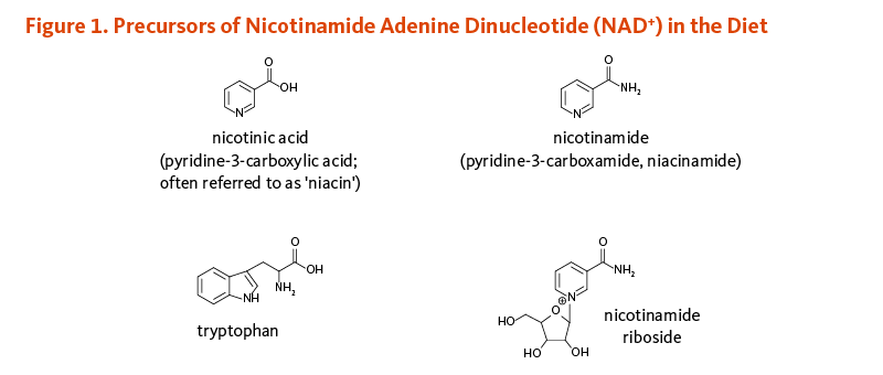 Figure 1. Precursors of Nicotinamide Adenine Dinucleotide (NAD+) in the Diet. Chemical structures of nicotinic acid (pyridine-3-carboxylic acid; often referred to as 'niacin'); nicotinamide (pyridine-3-carboxamide, niacinamide); tryptophan; and nicotinamide riboside.