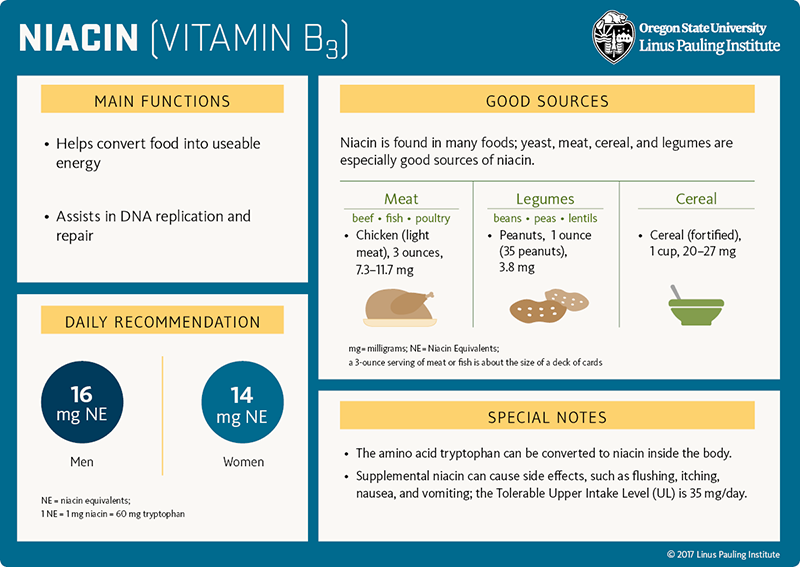 Niacin (vitamin B3) Flashcard. Main Functions: (1) helps convert food into useable energy, and (2) assists in DNA replication and repair. Good Sources. Niacin is found in many foods; yeast, meat, cereal, and legumes are especially good sources of niacin. Meat (beef, fish, poultry), chicken (light-meat), 3 ounces, 7.3-11.7 mg. Legumes (beans, peas, lentils), peanuts, 1 ounce (35 peanuts), 3.8 mg; Cereal (fortified), 1 cup, 20-27 mg. Daily Recommendation. 16 mg NE for men, 14 mg NE for women, NE=niacin equivalents, 1 NE=1 mg niacin=60 mg tryptophan. Special Notes. (1) The amino acid tryptophan can be converted to niacin inside the body. (2) Supplemental niacin can cause side effects, such as flushing, itching, nausea, and vomiting; the Tolerable Upper Intake Level (UL) is 35 mg/day.