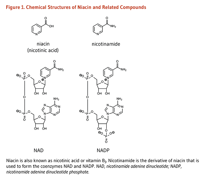 Figure 1. Chemical Structures of Niacin and Related Compounds. Niacin is also known as nicotinic acid or vitamin B3. nicotinamide is the derivative of niacin that is used to form the coenzymes NAD and NADP.