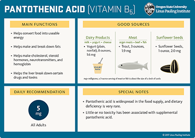 pantothenic acid flashcard thumbnail