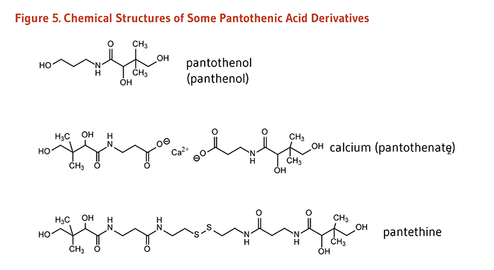 Figure 5. Chemical Structures of Some Pantothenic Acid Derivatives.