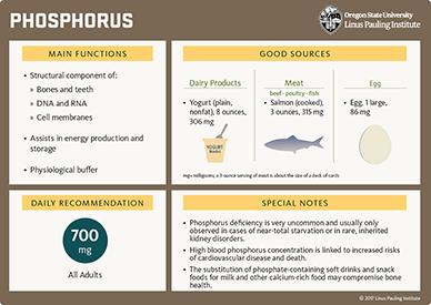 Low Phosphorus High Energy Foods
