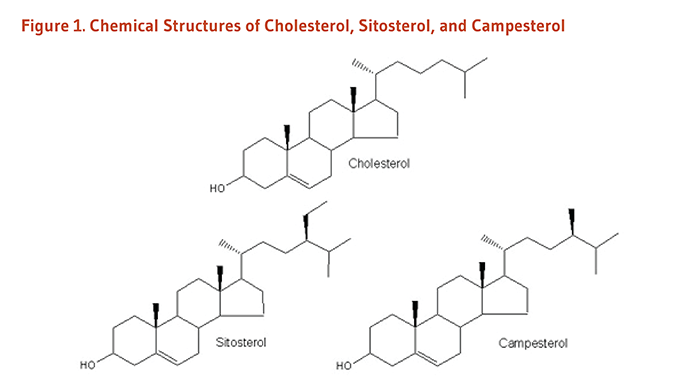 Figure 1. Chemical Structures of Cholesterol, Sitosterol, and Campesterol.