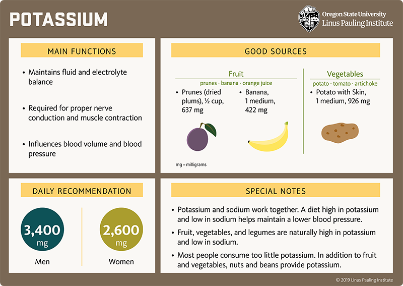 Potassium Flashcard. Main Functions: (1) maintains fluid and electrolyte balance, (2) Required for proper nerve conduction and muscle contraction, and (3) Influences blood volumen and blood pressure. Good Sources: Fruit (prunes, banana, orange juice); prunes (dried plums), one-half cup, 637 mg; banana, 1 medium, 422 mg; Vegetables (potato, tomato, artichoke), potato with skin, 1 medium, 926 mg. Daily Recommendation. 4,700 mg for adults. Special Notes: (1) Potassium and sodium work together. A diet high in potassium and low in sodium helps maintain a lower blood pressure. (2) Fruit, vegetables, and legumes are naturally high in potassium and low in sodium. (3) Most people consume too little potassium. In addition to fruit and vegetables, nuts and beans also provide potassium.