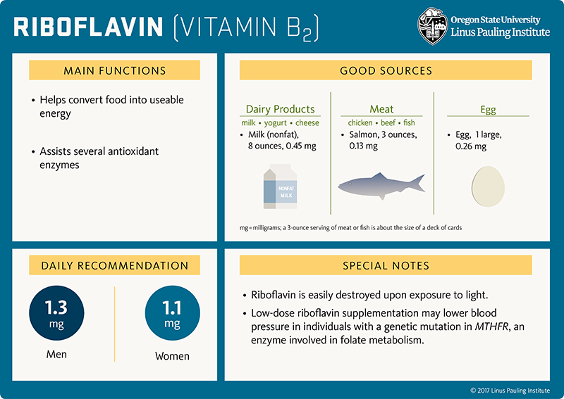Riboflavin (vitamin B2) Flashcard. Main Functions. (1) helps convert food into useable energy, and (2) assists several antioxidant enzymes. Good Sources. Dairy Products (milk, yogurt, cheese), milk (nonfat), 8 ounces, 0.45 mg; Meat (chicken, beef, fish), salmon, 3 ounces, 0.13 mg; Egg (1 large), 0.26 mg. A 3-ounce serving of meat or fish is about the size of a deck of cards. Daily Recommendation. 1.3 mg for men, 1.1 mg for women. Special Notes. (1) riboflavin is easily destroyed upon exposure to light. (2) Low-dose riboflavin supplementation may lower blood pressure in individuals with a genetic mutation in MTHFR, and enzyme involved in folate metabolism.
