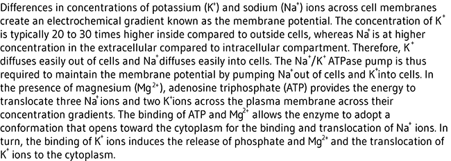 Figure legend: Differences in concentrations of potassium ions across cell  membranes create an electrochemical gradient