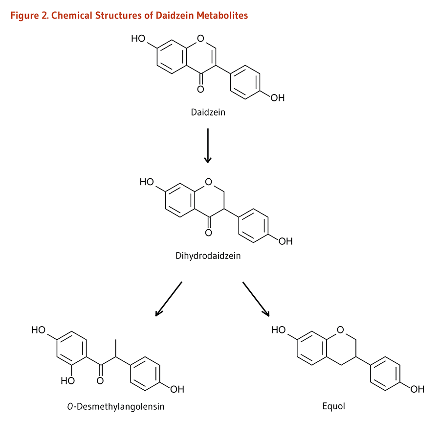 Figure 2. Chemical Structures of Daidzein Metabolites