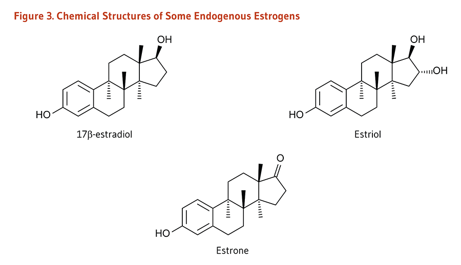 Figure 3. Chemical Structures of Some Endogenous Estrogens