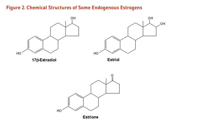 Figure 2. Chemical Structures of Some Endogenous Estrogens: 17 beta-estradiol, estriol, and estrione.