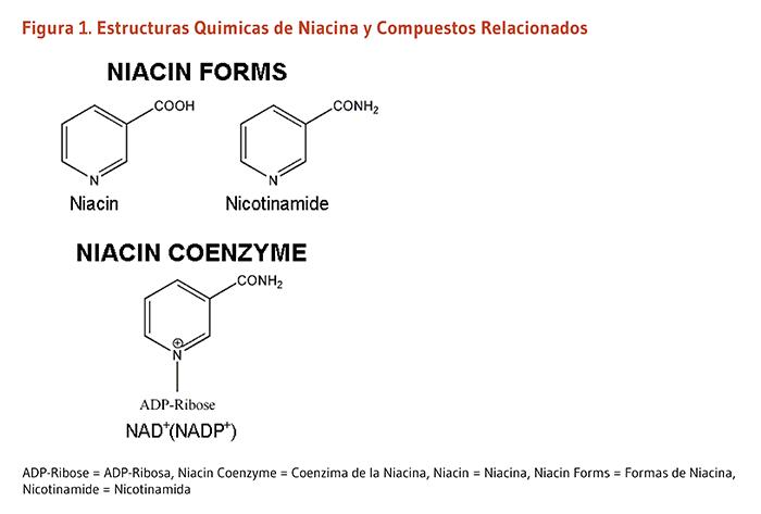remedio natural para controlar el acido urico productos con acido urico acido urico niveles normales