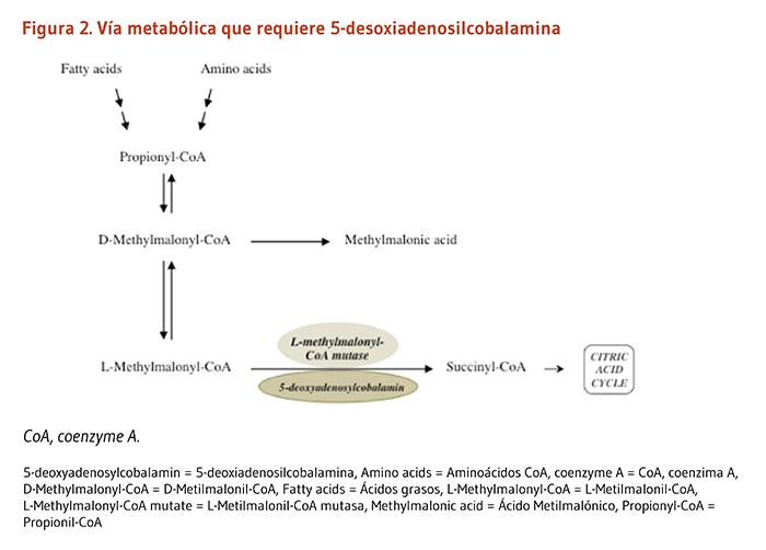 cymbalta mg