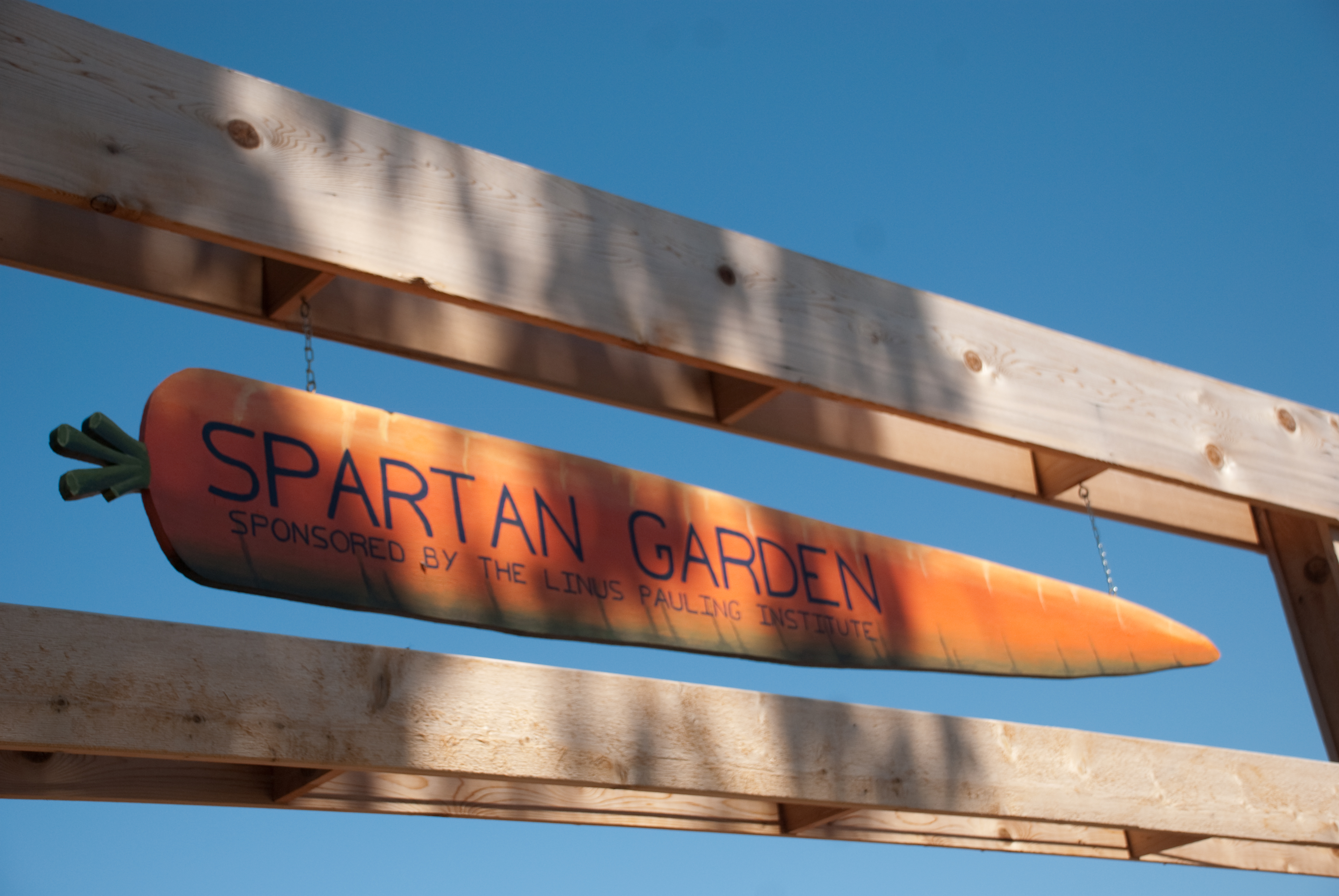 Background of Spartan Garden