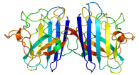Copper, Zinc Superoxide Dismutase