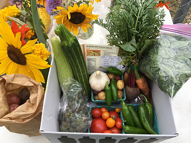 summer urban farm CSA box