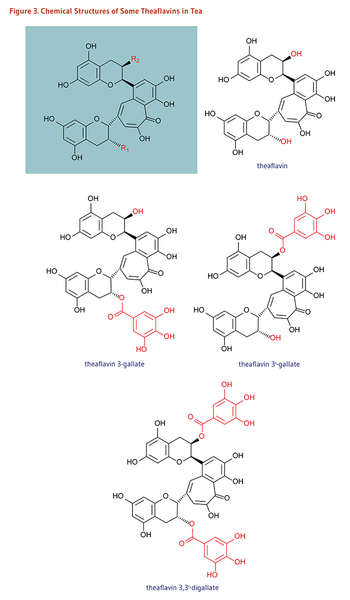 Figure 3. Chemical Structures of Some Theaflavins in Tea: theaflavin, theaflavin 3-gallate, theaflavin 3'-gallate, theaflavin 3,3'-digallate