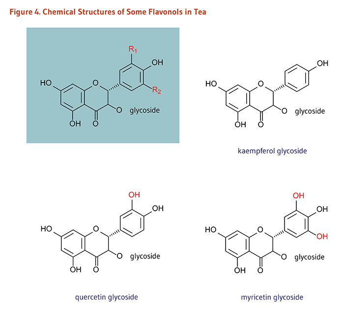 Figure 4. Chemical Structures of Some Flavonols in Tea: kaempferol glycoside, quercetin glycoside, and myricetin glycoside.